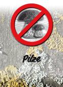 haresil holzschutz gegen pilze